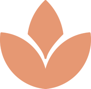 alpapart-lotus-2